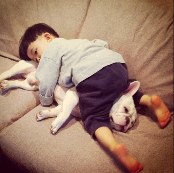 Aya-Sakai-japanese-boy-and-his-bulldog-7-600x599