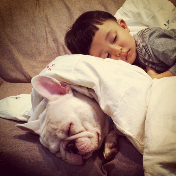 Aya-Sakai-japanese-boy-and-his-bulldog-9-600x600