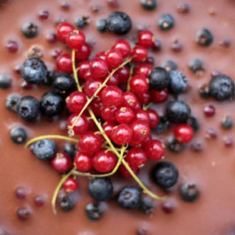 red currant and blueberry chocolate tart