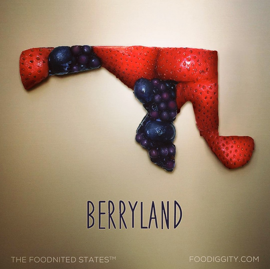 The Foodnited States Of America 50
