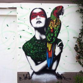 Fin DAC – graffiti artist