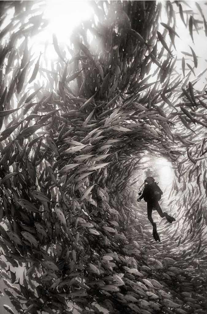 National Geographic Traveler Photo Contest 2015 01