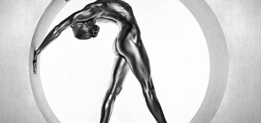 Silvereye by Guido Argentini