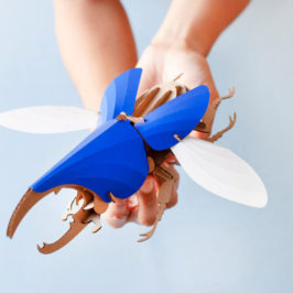 Paper Beetle Sculpture Kits by Assembli