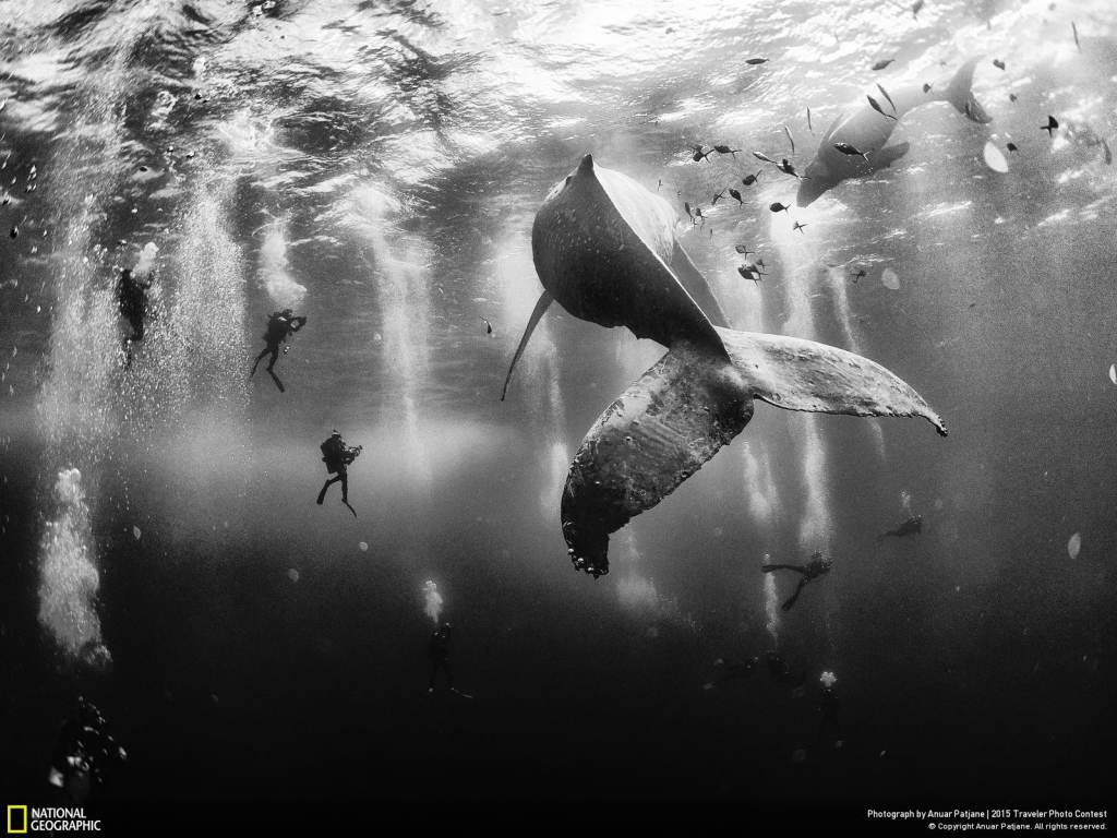 National Geographic Traveler Photo Contest 2015 05